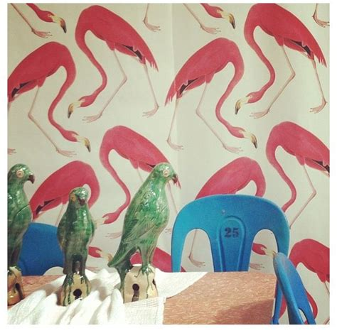 flamingo wallpaper kitchen 370 best images about interior homebody on pinterest