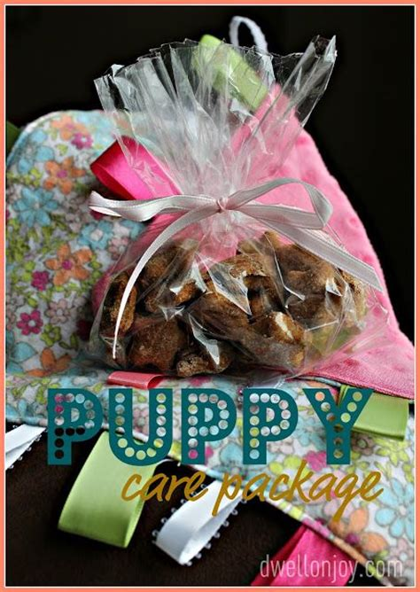 puppy care package diy new puppy care package diy gifts puppy care puppys