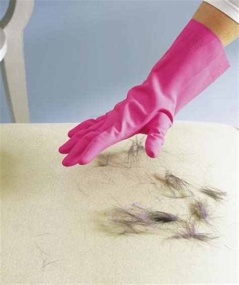 how to remove pet hair from sofa 40 must read cleaning tips tricks that will make your