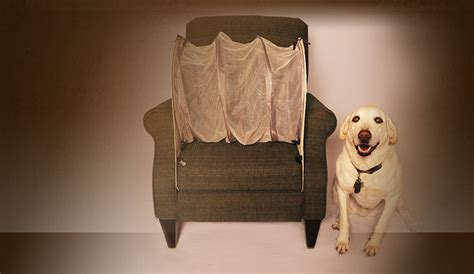 how to keep your dog off the sofa how to keep dogs off your furniture couch defender