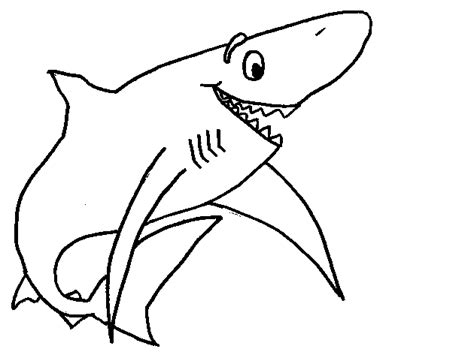 sharks a coloring book books sharks coloring pages