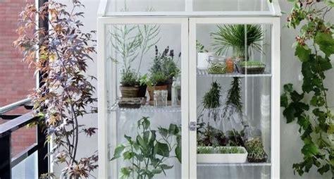 serra da interno serra da balcone serre come scegliere la serra da balcone