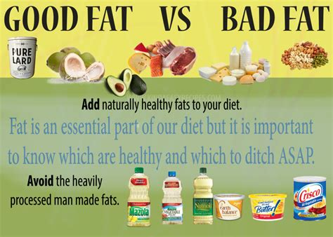 healthy and unhealthy fats and oils fats and oils 101 healthy or unhealthy