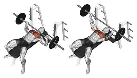 wide grip bench press for chest effective chest and triceps workout for building mass