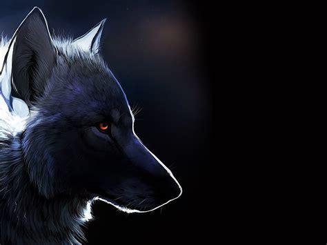 imagenes de lobos en 4k fondos de pantalla con lobos fondos de pantalla