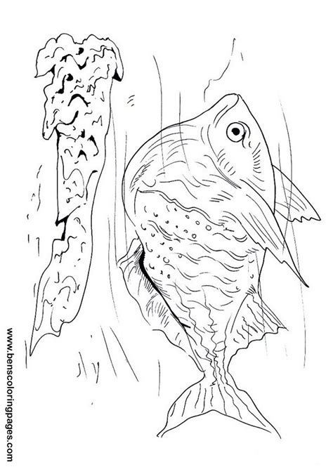 coloring page of hatchet hatchet coloring pages