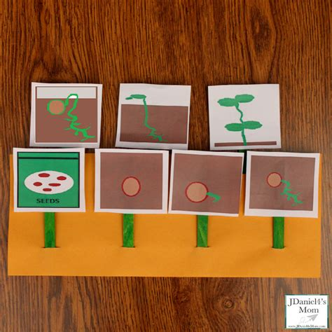 layoutinflater outside activity plant life cycle activity and printable cards