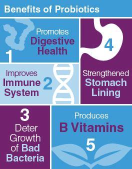 the benefits of probiotics while breastfeeding | prenate