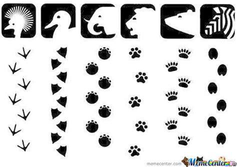 printable animal feet animal footprint by syafiq104 meme center