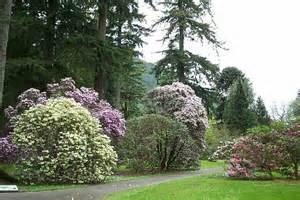 Benmore Botanic Gardens Benmore Botanic Garden Near Dunoon 169 Elliott Geograph Britain And Ireland
