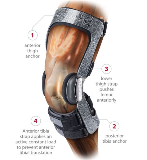 Knee Support Athlet Sport donjoy armor knee support brace with fourcepoint hinge