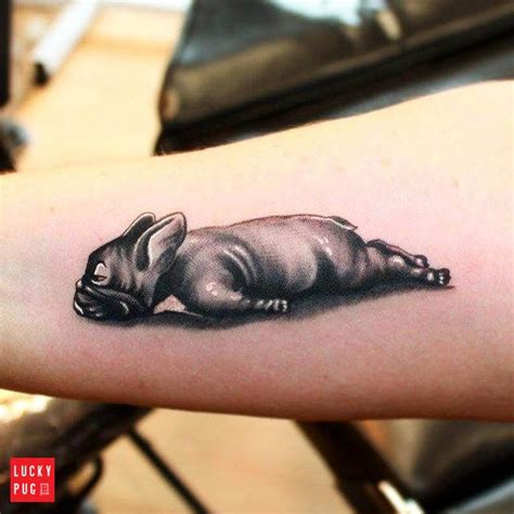 lucky dog tattoo 14 best squishy faced tattoos images on