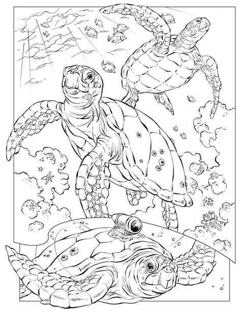 hard coloring pages ocean sea turtle sea turtle documentary coloring page