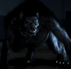 werewolf pack | werewiki | fandom powered by wikia