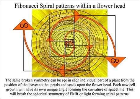 golden ratio dna spiral quantum art and poetry november 2011