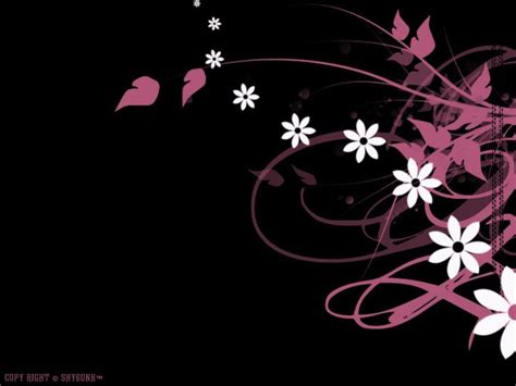 black white and pink wallpaper b q black white and pink backgrounds 10 free hd wallpaper