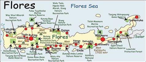 flores islandindonesia map indonesia pinterest