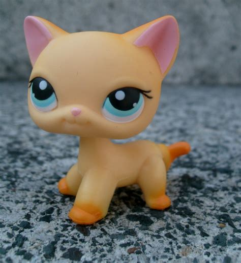 lps dogs and cats the gallery for gt littlest pet shop cat 339