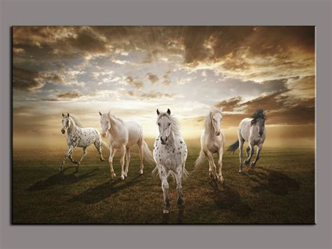 piece picture running white horse modern home wall decor