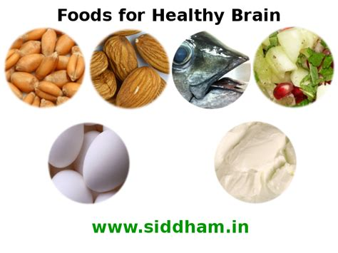 diet for the mind the science on what to eat to prevent alzheimer s and cognitive decline books foods for healthy brain brain boosters