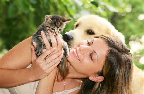 Helpless Dogs And Cats Are For Your Help by всемирный день животных 4 октября история и особенности