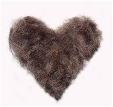 mens hair womens pubic hair mind medley workin out with my merkin out