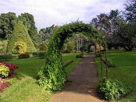 Panoramio Photo Of Sri Lanka Kandy Peradeniya Botanical Botanical Garden Peradeniya