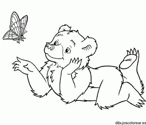 small bear coloring page dibujo de una osa con una mariposa