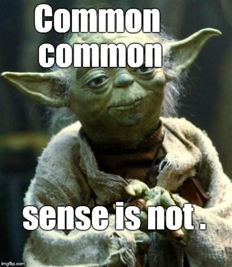 Common Sense Meme - once again yoda is correct even if syntax challenged he is imgflip