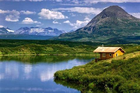 shore  alaska tangled  cabin