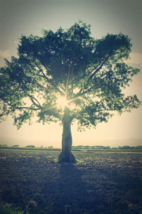 imagenes tumblr de paisajes imagenes de paisajes tumblr imagui