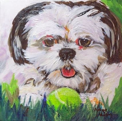 shih tzu play shih tzu at play original painting by artist norma wilson dailypainters