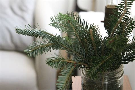 christmas tree clippings easy as diy pinterest