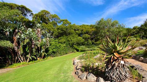 Kirstenbosch National Botanical Gardens Kirstenbosch National Botanical Gardens In Cape Town Expedia