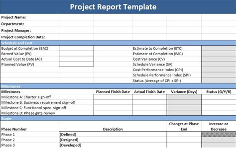 description of project status report template project