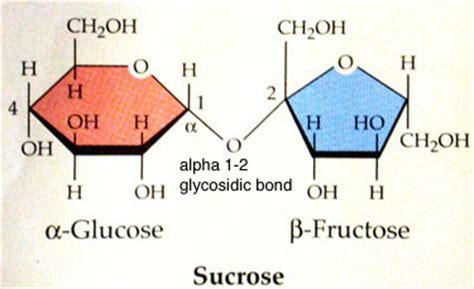 Table Sugar Formula by Disaccharides