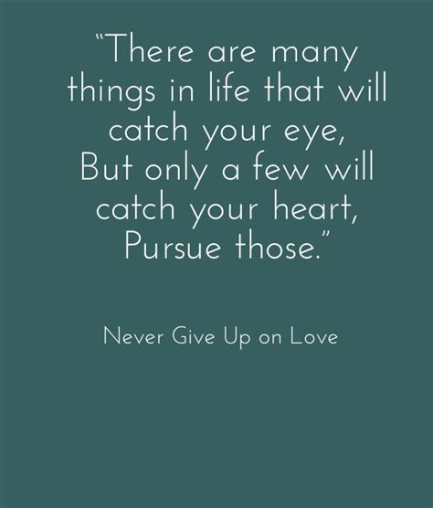 Quotes About Never Giving Up On Love. QuotesGram