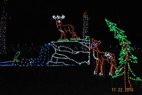 lehigh valley zoo light lights picture of lehigh valley zoo