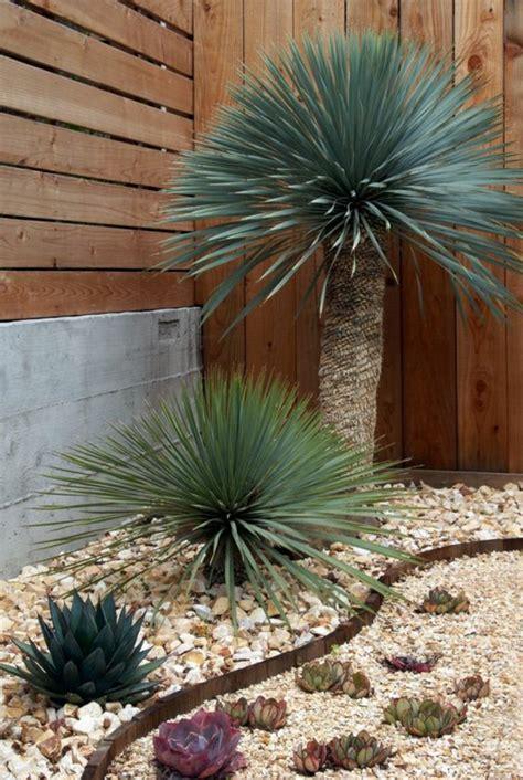 Vorgärten Mit Steinen by 1001 Beispiele F 252 R Vorgartengestaltung Mit Kies