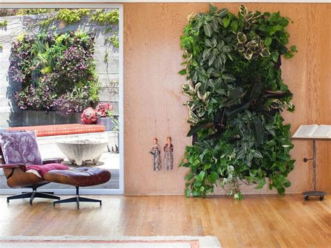 Wooly Pocket Living Wall Planter by Woolly Pocket Living Wall Planter Gardens Plants