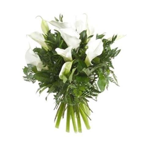 fiori calle bianche fiori per matrimonio domande e risposte fiori