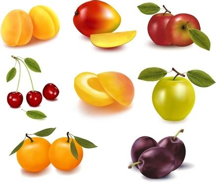 fruit free fruit free vector 2 052 free vector for
