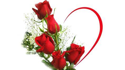 imagenes rosas san valentin imagenes gratis rosas para san valentin