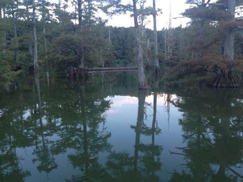 Lake Washington Ms Cabins lake washington 2 day fishing