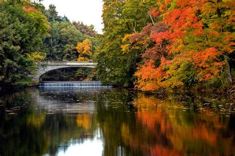new york state colors fall colors in new york state by don mennig