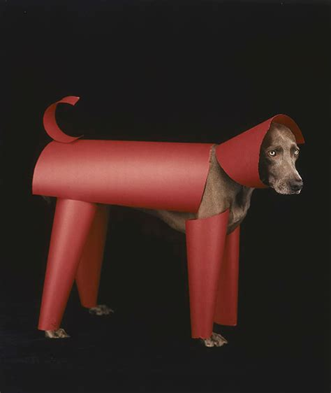william wegman dogs william wegman s portraits