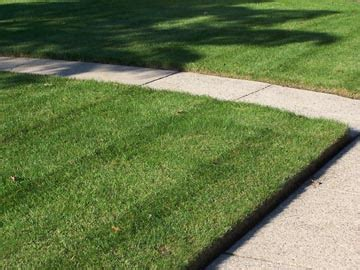 Landscape Edging Or Not Home Nv Service Lawn Mowing And Care