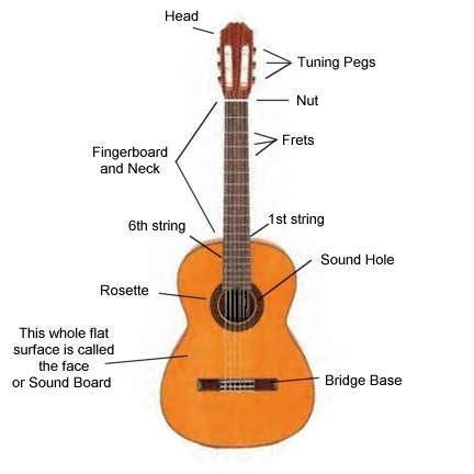 guitar diagram with parts classical guitar part names
