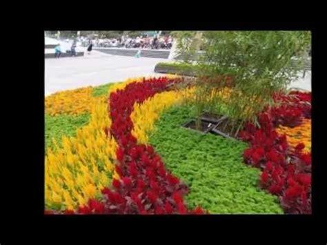imagenes de paisajes las mas bonitas los paisajes y las flores mas bellas del mundo 2 youtube