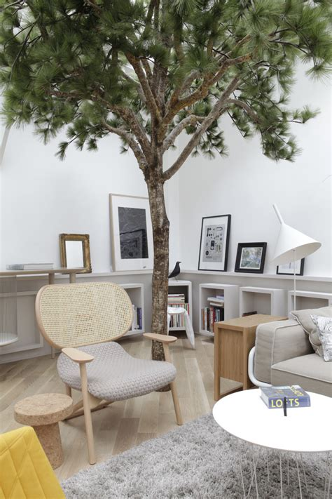 living room trees so hot right now trees in interior design yellowtrace